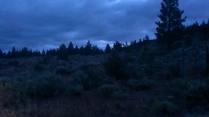 photo of high desert at about 5am