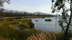 Photo of Otay Lakes